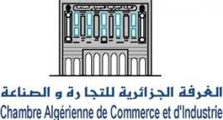 Intervention de M. Yacine Ould-Moussa - 1ère partie